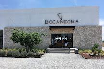 Bocanegra Cava de Quesos, Tequisquiapan, Mexico