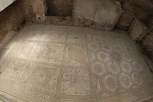 Floor mosaic The Punishment of Dirce, Pula, Croatia