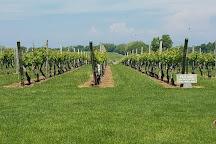 Palmer Vineyards, Aquebogue, United States