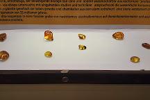 Dominican Amber Museum, Puerto Plata, Dominican Republic
