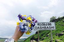 Dashbashi Canyon, Dashbashi, Georgia