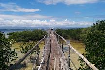 San Vicente Marine Sanctuary, Lapu Lapu, Philippines