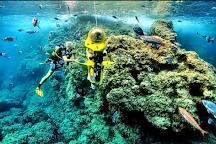 Bond Safari Scuba Diving, Kovalam, India