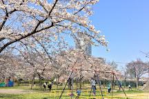 Kemasakuranomiya Park, Miyakojima, Japan