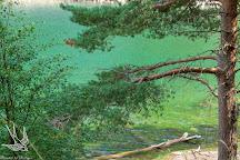 An Lochan Uaine (Green Loch), Glenmore, United Kingdom