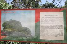 Meenuliyan Para, Idukki, India