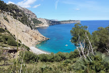 Playa Coll Baix, Alcudia, Spain