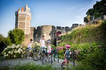 Castle of Oudon - Loire Scene, Oudon, France