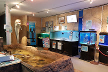 Visit Dolphin Discovery Centre on your trip to Bunbury or