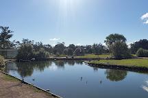 Aqua Park Bli Bli, Bli Bli, Australia