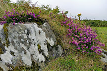 Altar Wedge Tomb, Schull, Ireland
