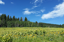 Vega State Park, Collbran, United States