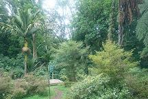 Hukutaia Domain, Opotiki, New Zealand