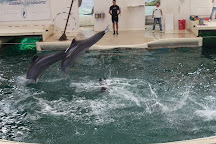 Dolphinarium Varna, Varna, Bulgaria