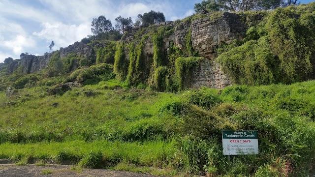 Tantanoola Cave