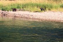 Wild Trout Adventures, Bigfork, United States