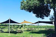 Askerne Vineyards, Clive, New Zealand