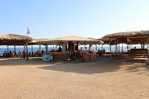 Diving & Discovery, Sharm El Sheikh, Egypt