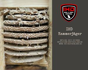 IHD Nürnberg Nord | Schädlingsbekämpfung, Bettwanzenbekämpfung, Wespen entfernen & Taubenabwehr