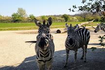 Tierpark Essehof, Lehre, Germany