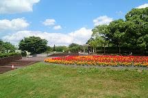 Aobanomori Park, Chiba, Japan