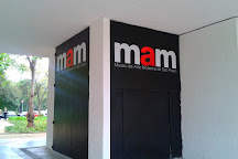 Museu de Arte Moderna de Sao Paulo, Sao Paulo, Brazil