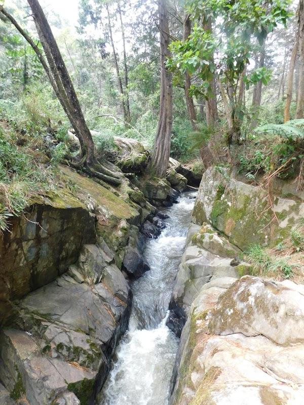 Arví Park Medellin Colombia