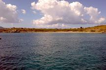 Buck Island Cove, St. Croix, U.S. Virgin Islands