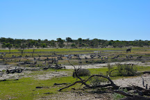 Makgadikgadi Pans National Park, Makgadikgadi Pans National Park, Botswana