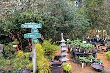 Bainbridge Gardens, Bainbridge Island, United States