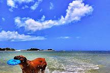Dog Beach, Fort Myers Beach, United States