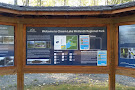 Cheam Lake Wetlands Regional Park