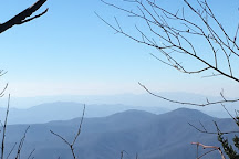 Andrews Bald Trail, Great Smoky Mountains National Park, United States