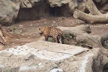 Auto Safari Chapin, Escuintla, Guatemala
