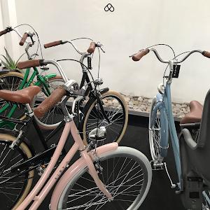 Bicicletas Vintage Perú - Alry Cycles 4