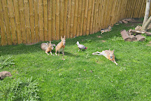 Exotic Zoo, Telford, United Kingdom