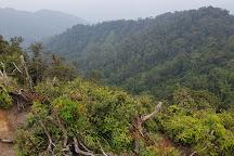 Gunung Ulu Semangko, Bukit Fraser, Malaysia