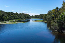 Ocala National Forest, Umatilla, United States