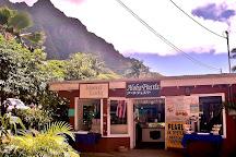 Tropical Farms Macadamia Nut Farm and Farm Tour, Kaneohe, United States
