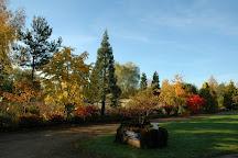 Bluebell Arboretum and Nursery, Swadlincote, United Kingdom