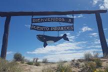 Hydro Sport, Puerto Piramides, Argentina