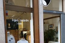 Pajaro Malandro, Porto, Portugal