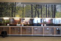 South Fork Natural History Museum, Bridgehampton, United States