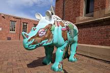 Australian Fossil and Mineral Museum, Bathurst, Australia