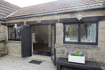 Jon Tremaine, Wildlife Artist Studio, Lelant, United Kingdom