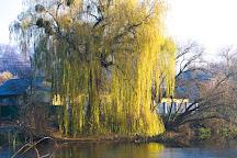 Podillya Botanic Gardens, Vinnytsya, Ukraine