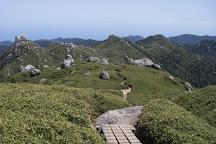 Mt. Miyanouradake, Yakushima-cho, Japan