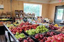 Hill Creek Farms, Mullica Hill, United States