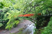 Saimyoji Temple, Kyoto, Japan