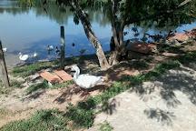Parque Nu Guasu, Asuncion, Paraguay
